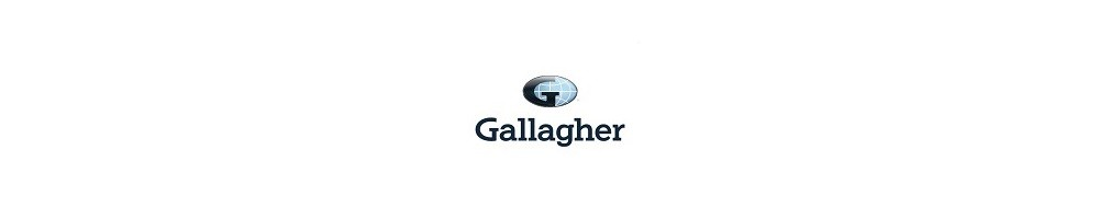 Rugby Union Gallagher Premiership Odds